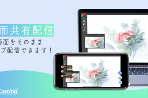 screen_pr2